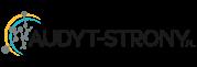 Audyt strony SEO logo